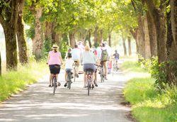 Eine Fahrradgruppe macht eine gemeinsame Radtour